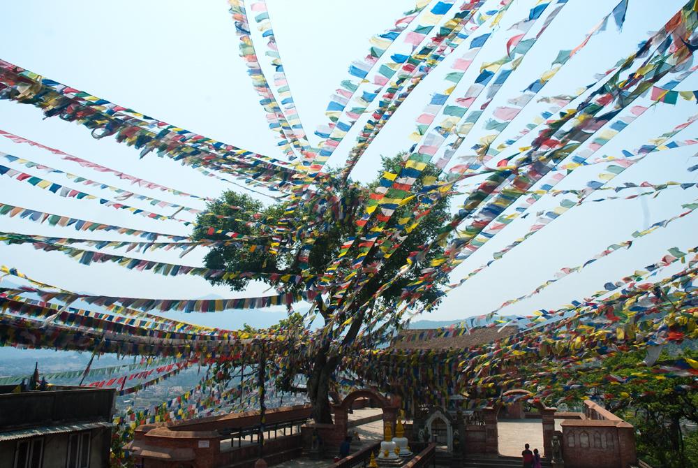 nepal-tempio-swayambhunath-tempiodellescimmie