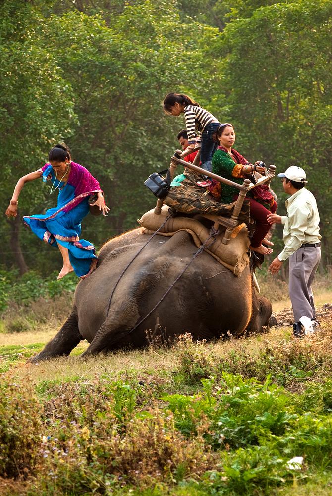 nepal-trekking-giungla-parco-chitwan-elefante
